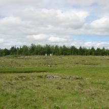 Skóræktarsvæði4